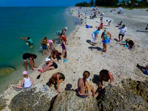 Shelling is the most common activity on Captiva Island